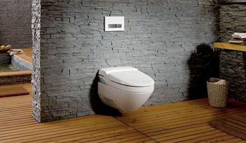 卫浴间选择那种马桶健康?蹲便器和坐便器对比!